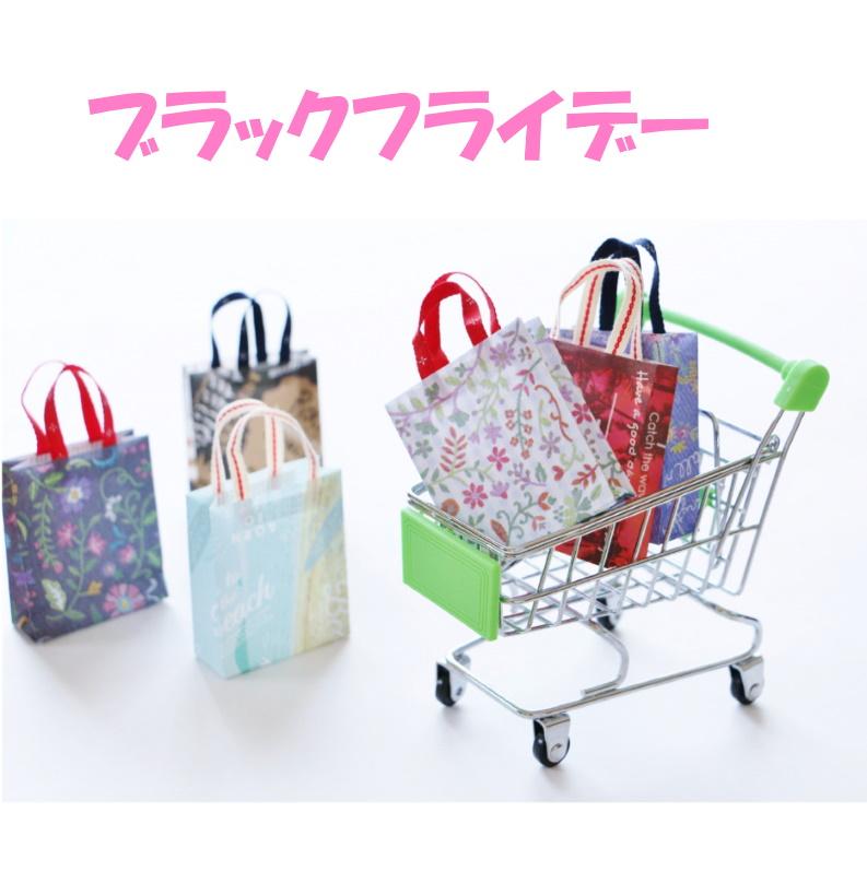 ショッピングカートと紙袋の写真:タイトルは『ブラックフライデー』